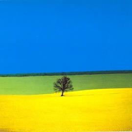 Franco Fontana: Full Color – le fotografie più famose in mostra al Museo Vittoria Colonna di Pescara